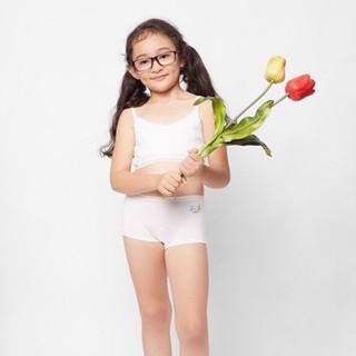 Hộp quần lót bé gái 6 cái boy short iBasic KG002P