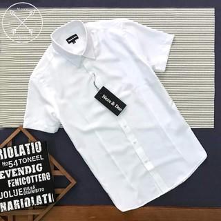 Áo sơ mi nam tay ngắn công sở trắng vải cotton lụa cao cấp ( nhiều màu) NS023