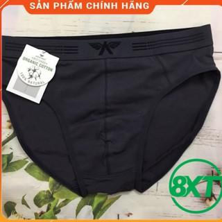 quần lót, quần sịp tam giac⚡ARISTINO⚡ kháng khẩu, khử mùi bảo vệ sức khỏe nam giới logo ĐẠI BÀNG đầy nam tính- ABF056