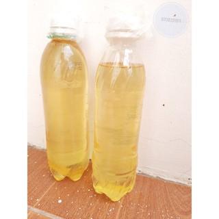 Tinh dầu xá xị ( gỗ gù hương) / Chưng cất truyền thống