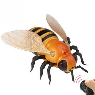Ong Robot Điều Khiển Từ Xa