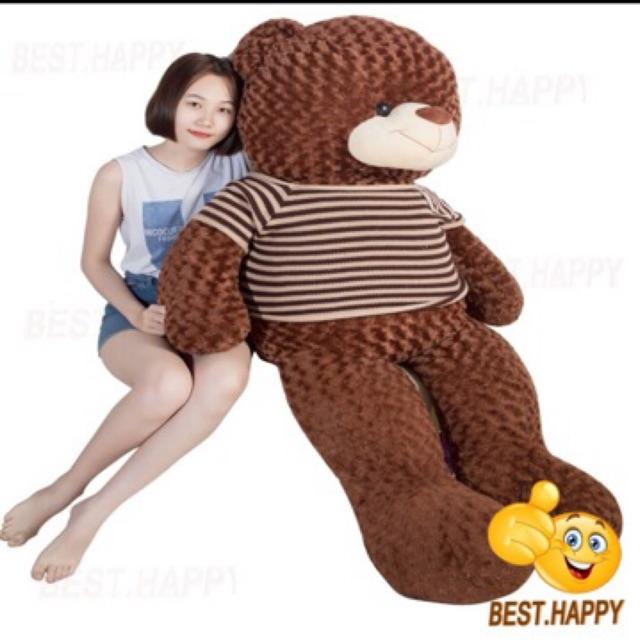 Gấu Bông Teddy khổ vải 1,8m( Size thật 1,6m)