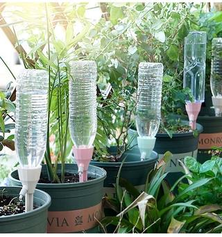 Thiết bị tưới nước tự động tiện lợi dành cho trồng cây cảnh 8