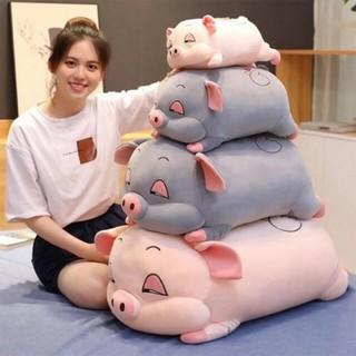 [freeship] Gấu Bông Heo Phê Cần, Heo Mắt Híp Lợn Ngủ Đờ Đẫn Siêu Yêu size 40cm thumbnail