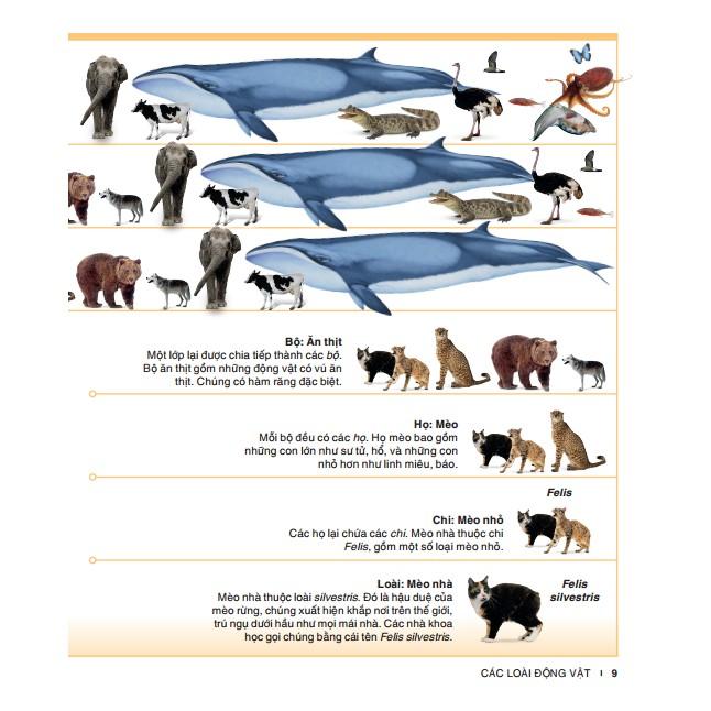 Bách khoa thiếu nhi động vật