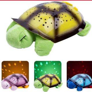 Rùa chiếu sao ru ngủ