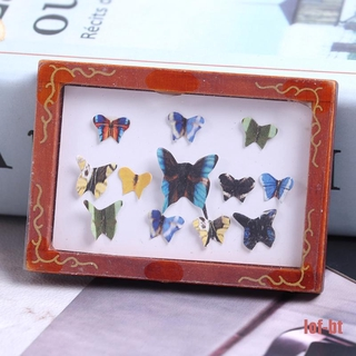 lof-bt Vintage Framed Photos Miniature Butterfly specimen Doll Accessories Wall Picture