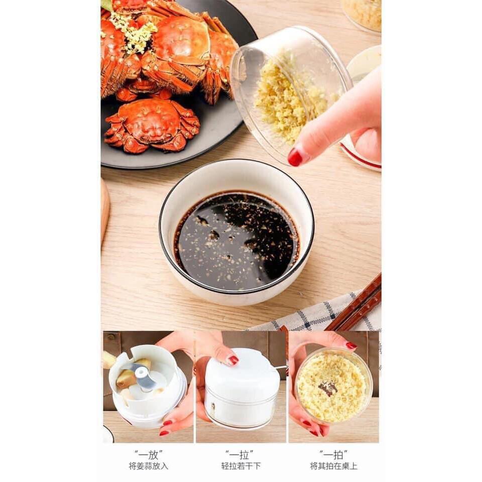 Xay tỏi mini bằng tay Mini Food Chopper