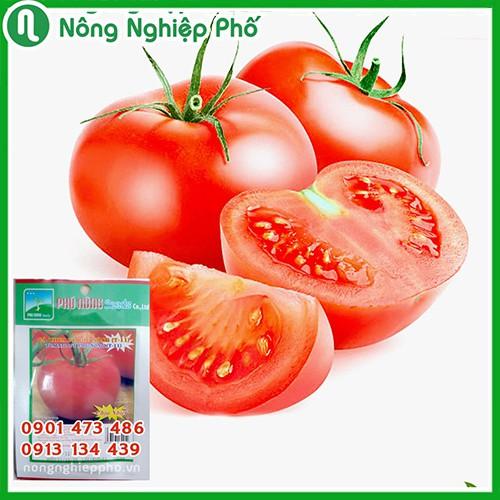 Gói 0.1 gram - Hạt giống Cà chua F1 PN (T – 11)