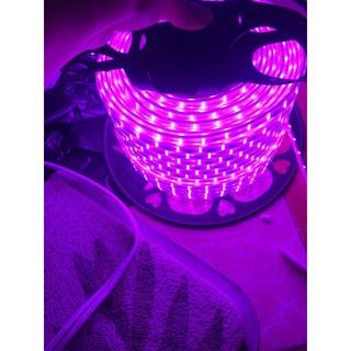 combo 10m Dây led đoi màu tím hồng siêu sáng(kèm nguồn)