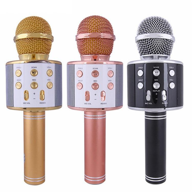 Micro Karaoke Kiêm Loa BLUETOOTH WS858