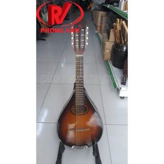Đàn mangdolin Việt Nam