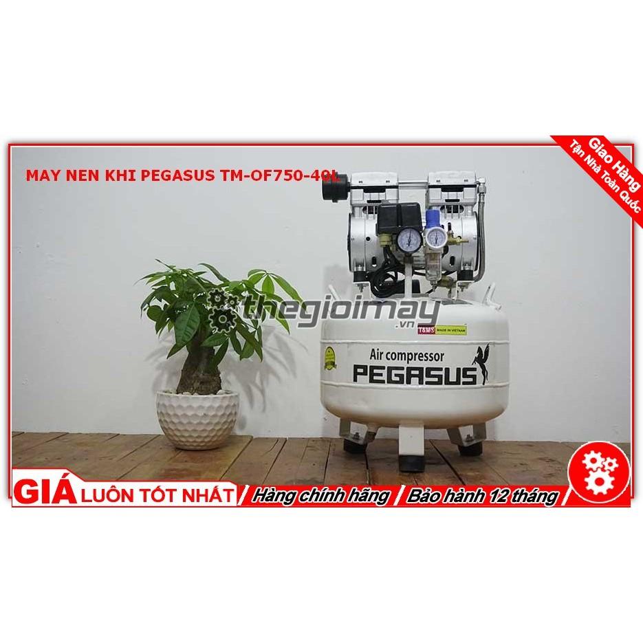 Máy nén khí không dầu giảm âm PEGASUS TM -OF750 -40L - 21721210 , 1617597490 , 322_1617597490 , 2950000 , May-nen-khi-khong-dau-giam-am-PEGASUS-TM-OF750-40L-322_1617597490 , shopee.vn , Máy nén khí không dầu giảm âm PEGASUS TM -OF750 -40L