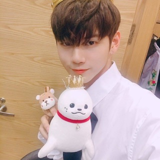 Seal Ong Seong Woo – WANNA ONE
