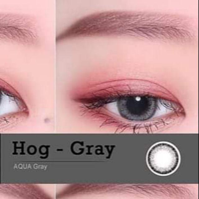 Lens HogAqua Gray – Kính áp tròng hàn quốc chính hãng
