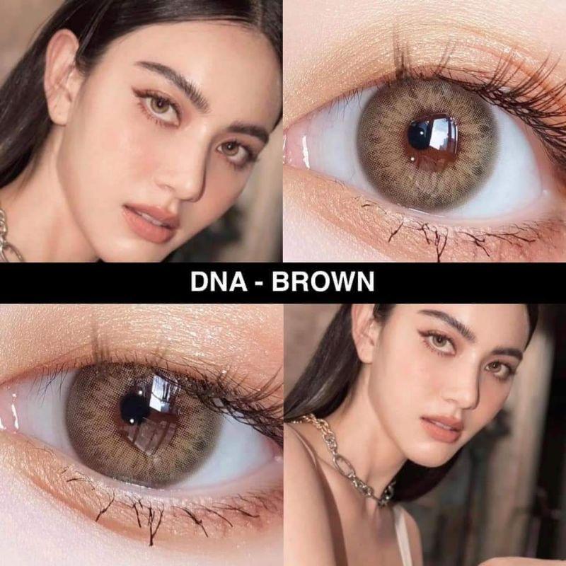 mẫu lens Brown/Blue/Gray DNA ( 0 độ ) tang khay mini