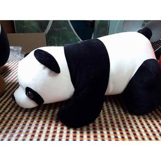 Gấu bông gối ôm Gấu trúc (65cm) CAO CẤP GIÁ RẺ DỄ THƯƠNG XINH XẮN