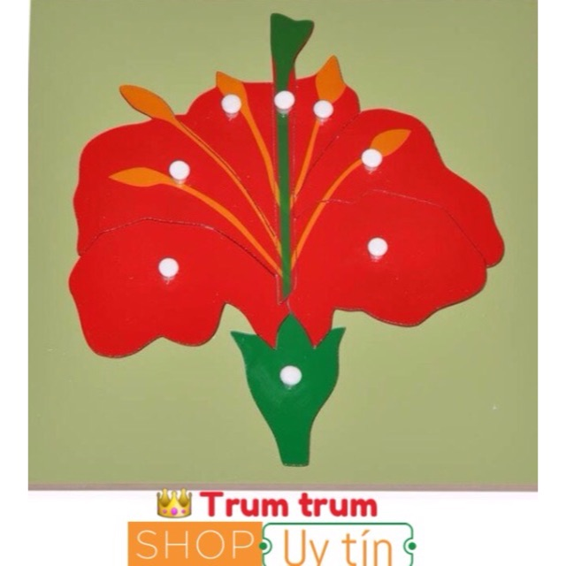 Giáo cụ Montessori Ghép hình bông hoa – Flower puzzle Kích thước : 30cm x 30cm