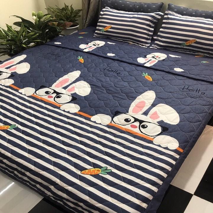 Ga trải giường poly kèm 2 vỏ gối nằm Mẫu thỏ đeo kính xanh