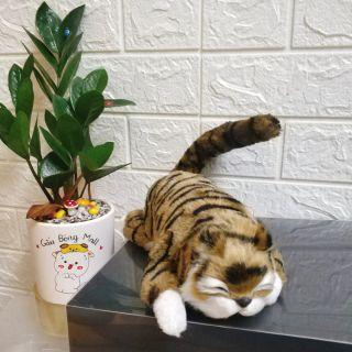 Đồ chơi Mèo cười hài hước [Đồ chơi điện tử cho bé]