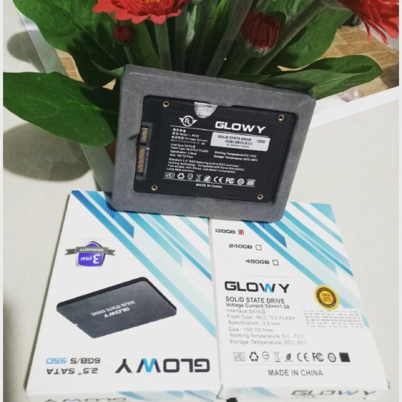 Ổ CỨNG SSD120GB GLOWY BH 36T