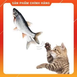 ĐỒ CHƠI CÁ BIẾT NHẨY FISH DANCING SIÊU HOT-BÁN SỈ