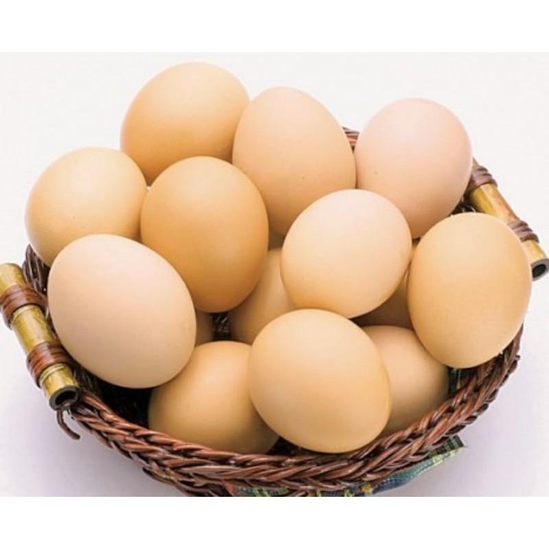 Trứng giàu vitamin tốt cho mắt