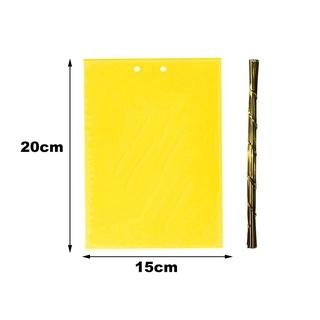 Set 20 keo dính ruồi an toàn cho sân vườn - hình 4