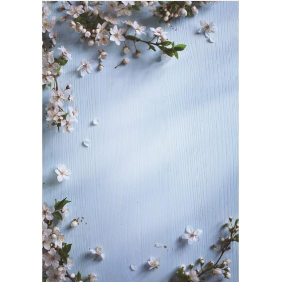 Tấm phông nền 3D chụp ảnh (nền gỗ xanh trơn hoa trắng)