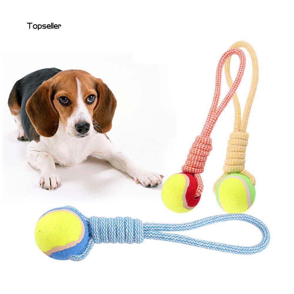 Quả bóng tennis đồ chơi cho thú cưng