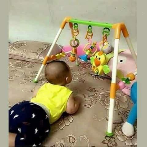 (Miễn Phí Vận Chuyển) Kệ chữ A con Vẹt có nhạc cho Bé + Kẹp đuổi muỗi cho bé