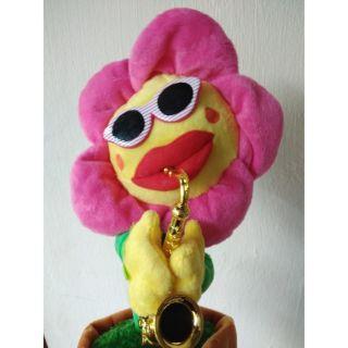 Hoa uốn éo theo nhạc màu hồng
