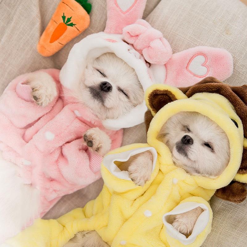 quần áo cho chó