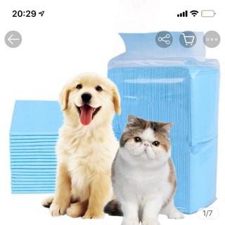 [Vô Địch giá rẻ] Tã lót chuồng cho thú cưng thumbnail