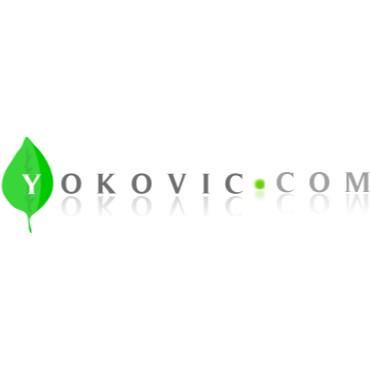 Ống Hút Giấy- Ly- Túi Yokovic