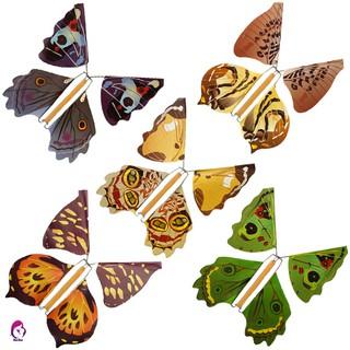 Túi 5 con bướm đồ chơi phát sáng trong tối độc đáo Scam kết đẹp
