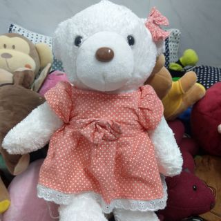 Teddy đầm cam sữa