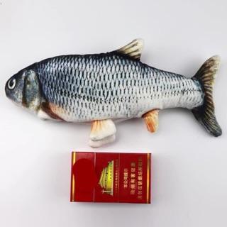 Con cá dẫy dãy hàng trả order [shopmh59- sản phẩm có thể thay thế bằng voucher mua hàng]