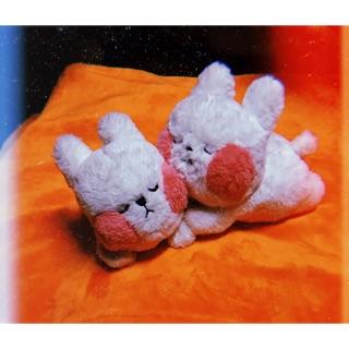 Thỏ má hồng bông ( 볼빵이 토끼 )