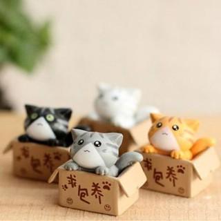 Mèo trong hộp - phụ kiện terrarium