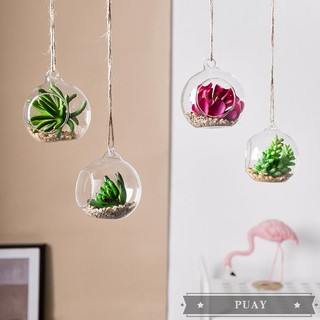Simulation hanging bottle plant hanging jewelry milk tea shop bedroom wall wall small decoration liv