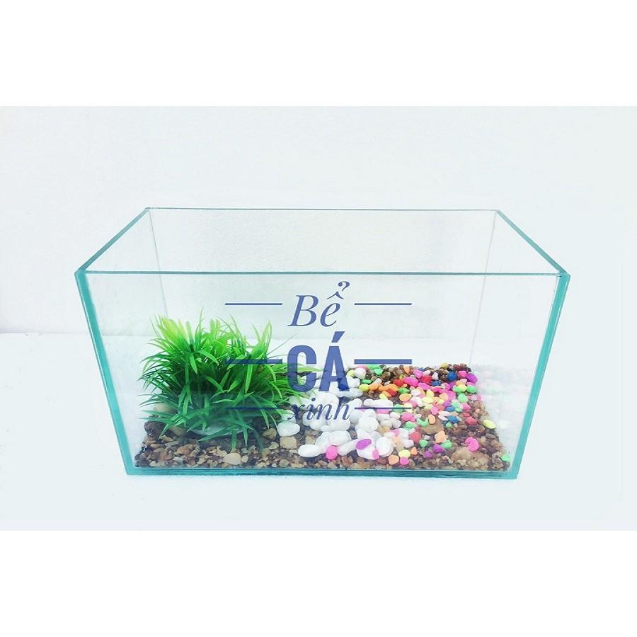 Bể cá mini để bàn 30x14x15cm & lọc thác (Tặng phụ kiện trang trí0