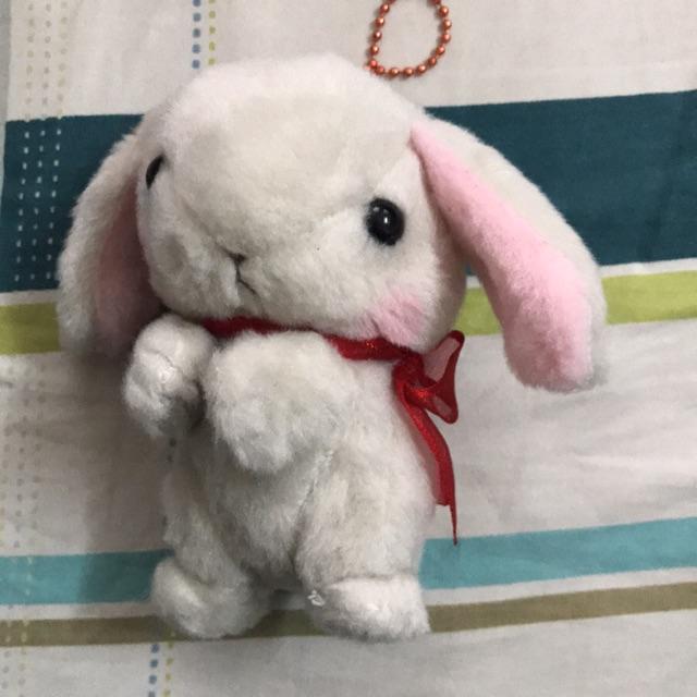 Thỏ bông Amuse