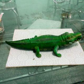 Đồ chơi cá sấu pin có đèn và nhạc
