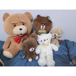 Gấu teddy con nhỏ