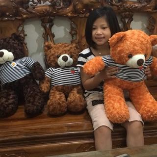 Gấu teddy nhồi bông cao 60cm
