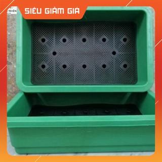 (Gía Sốc) Combo 10 khay trồng rau 65cm x 42cm x 16cm màu xanh lá cây