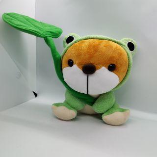 Gấu bông cosplay ếch