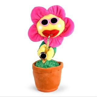 [Màu Hồng] Hoa uốn éo 60 bài hát – hoa hướng dương biết hát, hoa biết thổi kèn