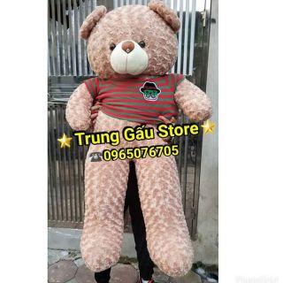 (100% Ảnh thật)-Gấu bông Teddy 1M6 khổ vải cao 1m4 siêu dễ thương-FREESHIP